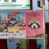 【駅張り広告】効果大!ポスター掲示/キャンペーンの料金/サイズ/申込